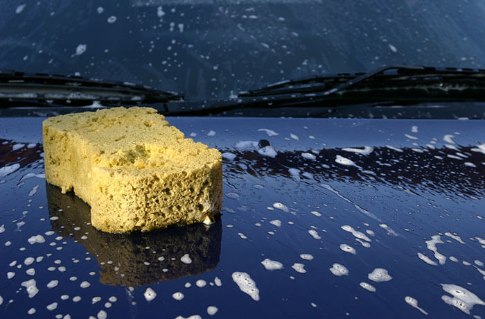 Sponge on a bonnet