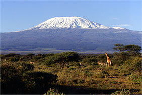 View of Mount Kilimanjaro