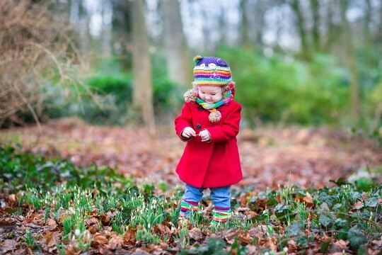 Toddler in a red coat playing in a winter garden